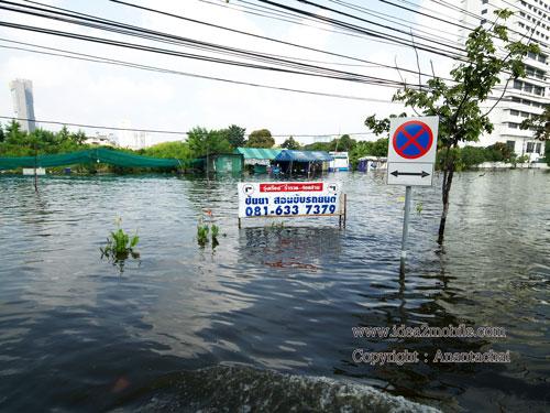 เส้นรัชดาน้ำท่วมสูง