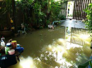 ต่อสู้กับน้ำท่วม